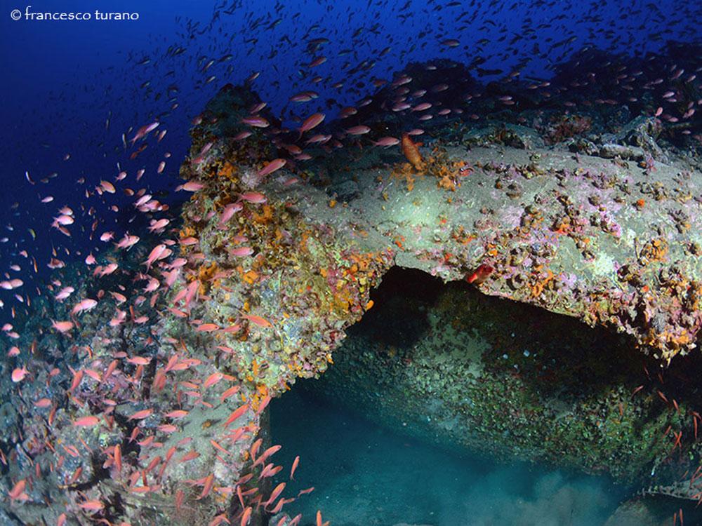 Escursioni subacquee Milazzo,Isole Eolie-RELITTO Carboniera-Blunauta Diving Center