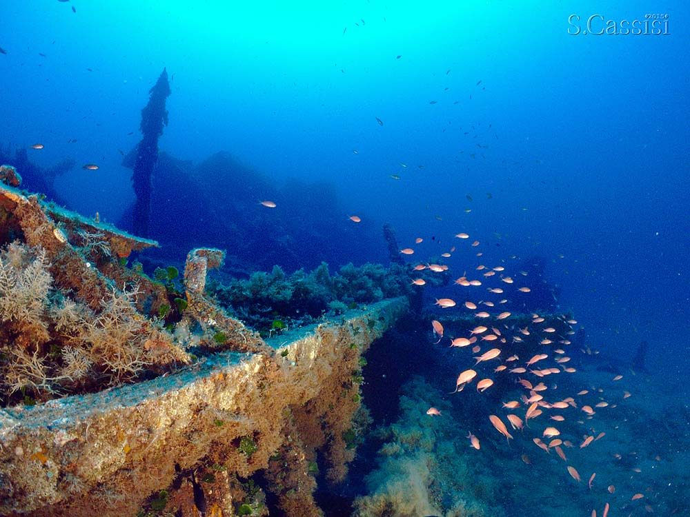 Escursioni subacquee RELITTO LANISCHEN–PANAREA, Blunauta Diving